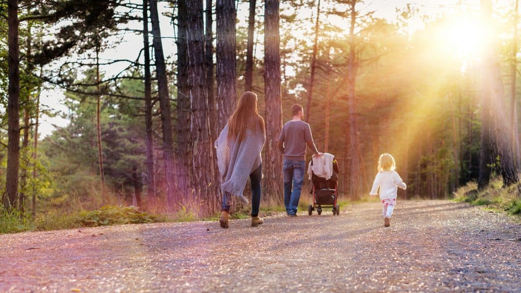 a family walking in the woods at sunset